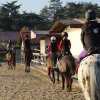 Cours collectifs pour enfants dès 3 ans (baby poney)